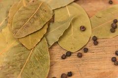 Podpalanego liścia ziele Fotografia Stock