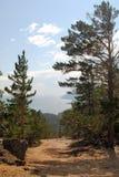 podpalany Baikal jezioro Obrazy Royalty Free