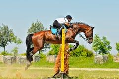 podpalany koń skacze nad jeźdzem Obraz Stock