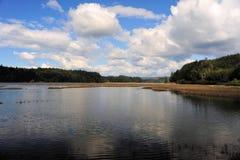 podpalany krajowy schronienia przyrody willapa Zdjęcie Royalty Free