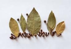 Podpalany liść, cloves, pieprzowa podprawa, aromat Obrazy Royalty Free