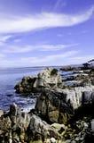 podpalany Monterey Obrazy Royalty Free
