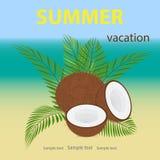 Podróż, wektorowa ilustracja kokosowy lying on the beach na palmowych gałąź S ilustracji