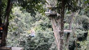 Podróżnicy robią przygody aktywności w dżungli; przejażdżka bicyklu krzyża linowy most przy sławnym Attr zdjęcie wideo