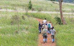 Podróżnicy trekking na sposobie otaczającym zielonymi kwiatonośnymi gras Obraz Royalty Free