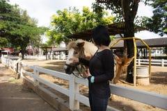 Podróżnik kobiety tajlandzka podróż i pozować dla bierzemy fotografię z Karłowatą końską pozycją relaksujemy w stajence przy zwie zdjęcie stock