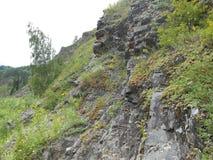 Podróżuje w halnych ludziach i sposobie na rockowej pobliskiej roślinie zdjęcia stock