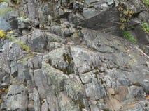 Podróżuje w halnych ludziach i sposobie na rockowej pobliskiej roślinie zdjęcie royalty free