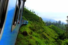 Podróży fotografia: Błękitny pociąg przez herbacianej plantaci Sri Lanka zdjęcie royalty free