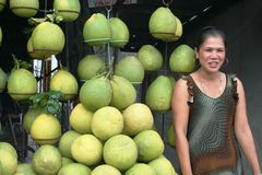 Podróż Azja: Pamela Fotografia Stock