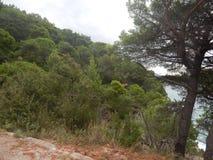 Podróż Montenegro na Adriatyckim morzu Obraz Royalty Free