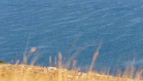 Podróżnik kayaking w otwartym morzu Zdjęcia Stock