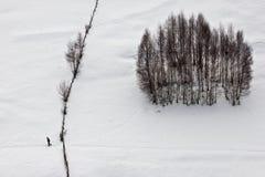Podróżnik w zima ziemi Zdjęcia Stock