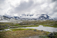 Podróż w Norwegia górach przy latem Zdjęcie Stock