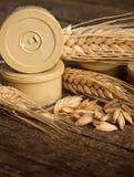 Pods of barley Royalty Free Stock Photo