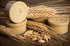 Pods of barley Stock Photos