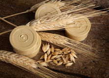 Pods of barley Stock Photography
