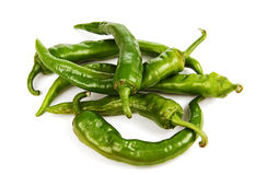 Pods of green hot peppers. Stock Photography