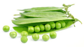 Pods of green peas Stock Image