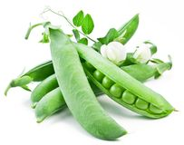 Pods of green peas with leaves Royalty Free Stock Image
