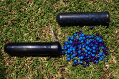 Pods with paintballs Stock Photos