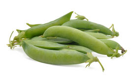 Pods of pea Royalty Free Stock Photography