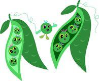 Pods of Peas Friends Royalty Free Stock Photo
