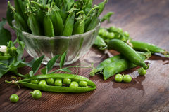 Pods of peas Stock Images