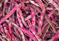 Pods of red beans on the counter farm market Royalty Free Stock Images