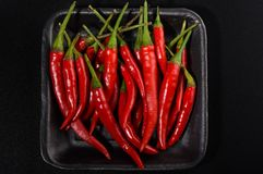 Pods of red hot pepper in a plastic tray on a black background. Close up stock photography