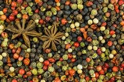 Podstawowego projekta pikantności smaku aromata kulinarna ciętość wiele grochu menu nieskończonego jaskrawego tła ustalone podpra zdjęcie stock