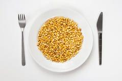Kukurydzany posiłek. Zdjęcie Royalty Free