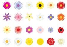 podstawowy kwiaty Obraz Stock