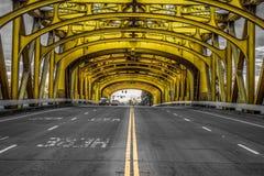 podwójne żółte fotografia stock