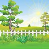 Podwórka ogródu krajobraz w letnim dniu z światłem słonecznym na niebieskim niebie Zdjęcia Stock
