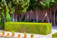 Podwórza i ogródy sławny pałac Alcazaba w M Fotografia Stock