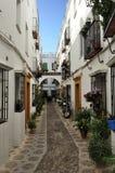 Podwórze dekorował z kwiatami, cordoba, Hiszpania obraz royalty free