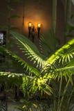 Podwórze ogród, Parroquia San Pedro Claver zdjęcie stock