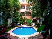podwórze tropikalny Zdjęcie Royalty Free