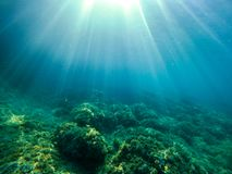Podwodna eksploracja w raj wyspie zdjęcie royalty free