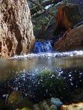 Podwodna i wodna asymilacja strumieniem fotografia royalty free