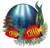 Podwodna karta z tropikalnym płomienia angelfish royalty ilustracja