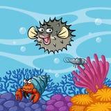 Podwodna scena z dennymi zwierzętami zdjęcia stock