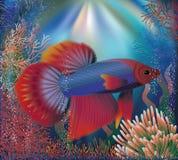 Podwodna tapeta z tropikalną well ryba, wektor Obrazy Royalty Free