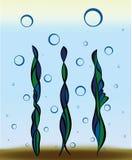Podwodne barwione rośliny Obraz Royalty Free