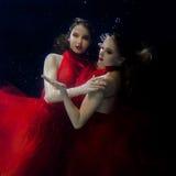 Podwodni dwa portreta ot młode piękne dziewczyny Obraz Stock