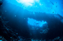Podwodny światło słoneczne w Bandzie, Indonezja Obrazy Royalty Free