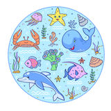 Podwodny świat Zdjęcie Stock