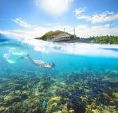 Podwodny świat na słonecznym dniu przy Apo wyspą. Zdjęcia Royalty Free