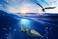 Podwodny Światowy tło Zdjęcie Royalty Free